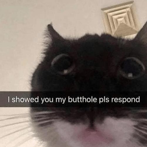 ShowedmyButthole