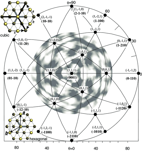 Stereographic-projection-of-Si-2p-photoelectron-intensities-of-3C-SiC111-and-the