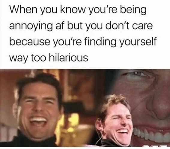 l-13528-when-you-know-youre-being-annoying-af-but-you-dont-care-because-youre-finding-yourself-way-too-hilarious