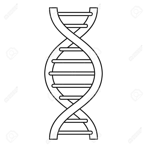 73827053-dna-strand-icon-outline-style
