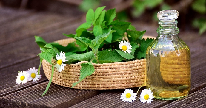 herbs-5145166_1280