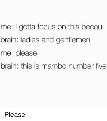 me-i-gotta-focus-on-this-becau-brain-ladies-and-12428423