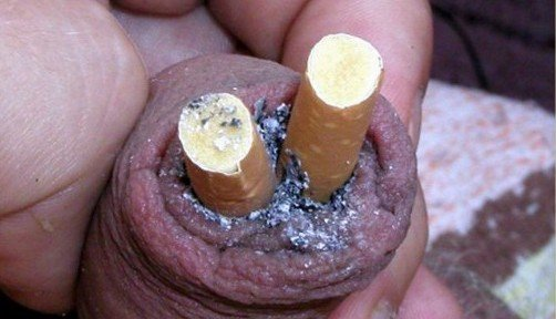 cock-ashtray-penis-torture-with-cigarettes-and-more-33-502x288