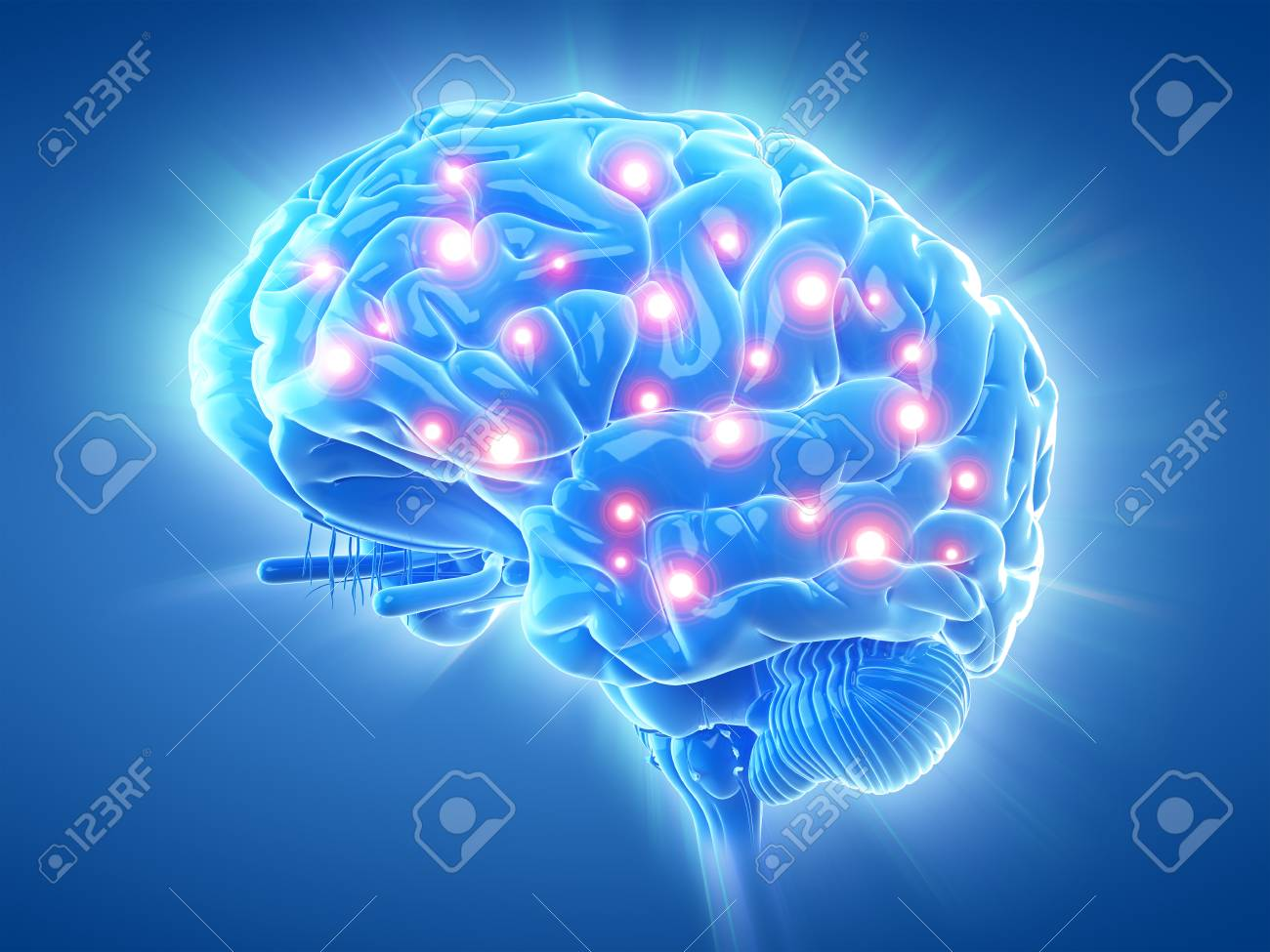 60919482-3d-rendu-illustration-médicalement-exacte-d-un-cerveau-actif