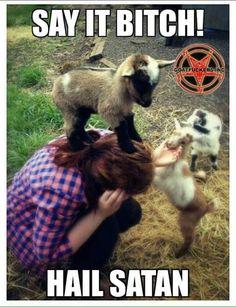 0dfa2e99a559074bdce56705edba423c--satan-sheep
