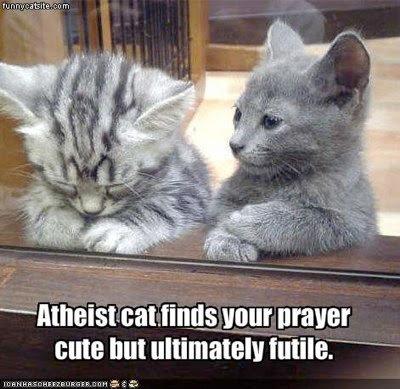 atheist_cat