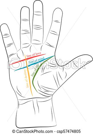 chiromancy-hand-with-lines-of-life-love-vector-clipart_csp57474805