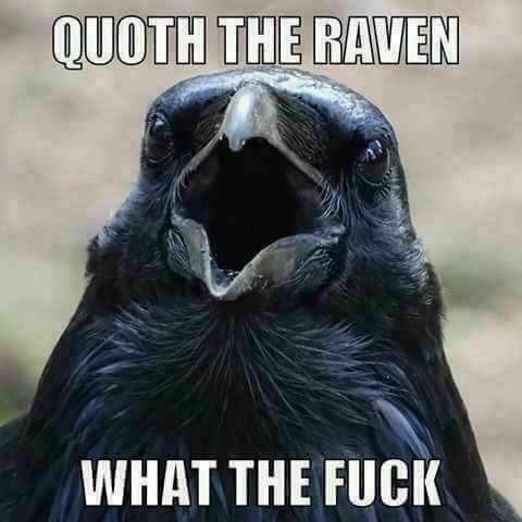 Quoth%20the%20raven%20-%20wtf