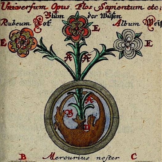 Opus alchymicum