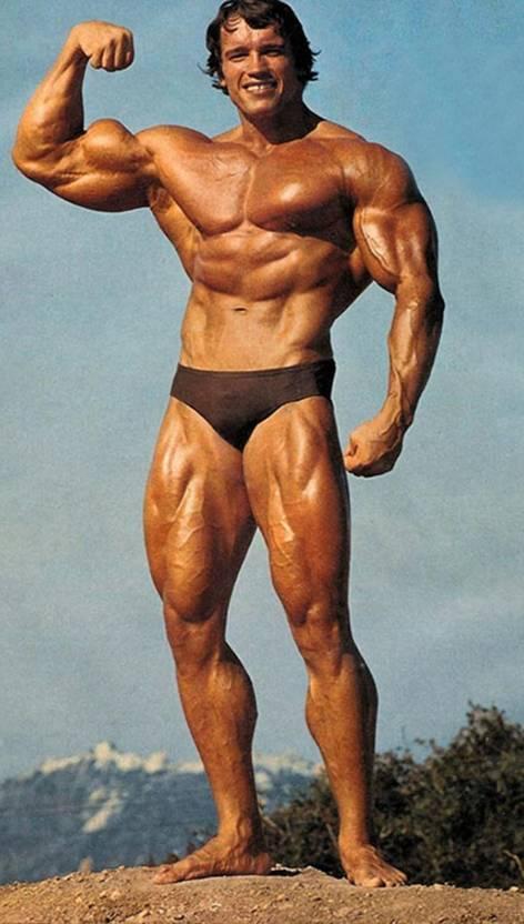 medium-poster120-arnold-schwarzenegger-bodybuilding-poster-hd-original-imaernfrhnk2zzhe